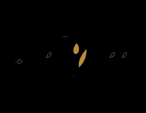 VASIKO-LOGO-2-small-size